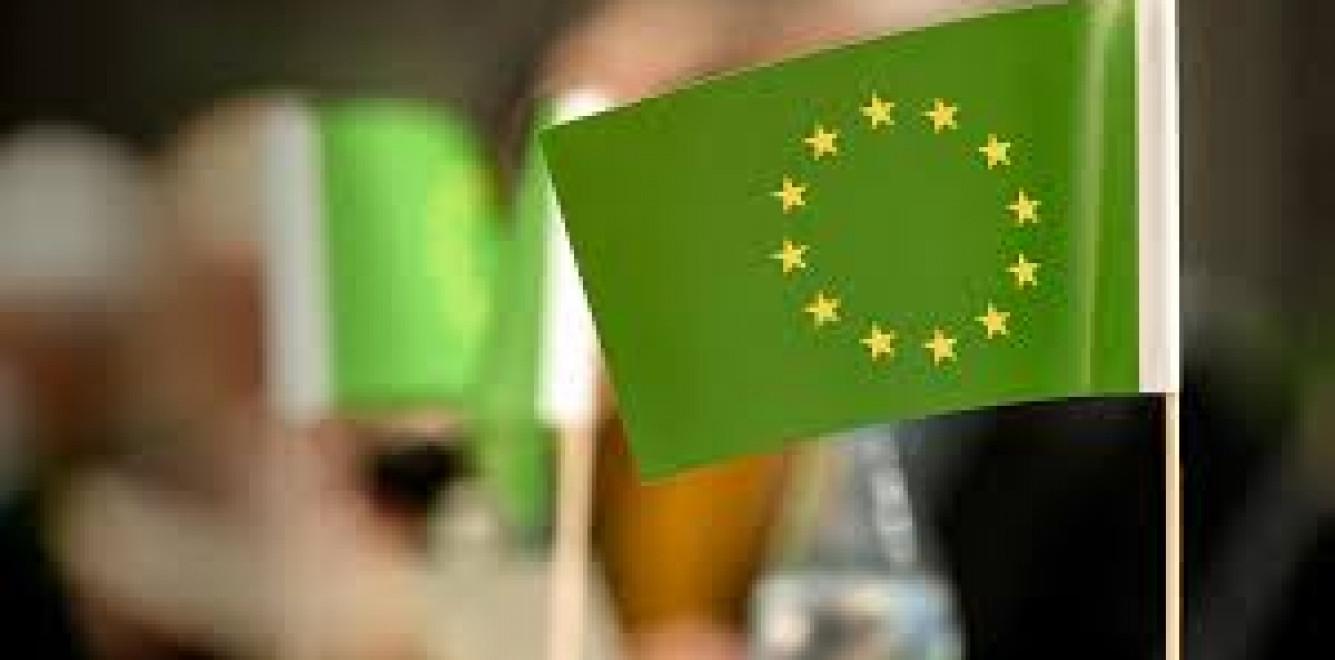 Европейский зеленый курс иУкраина: мызастолом или вменю?