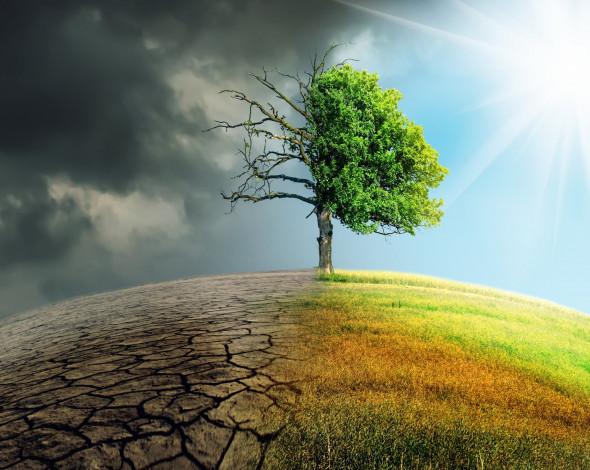 Кліматичні зміни диктують аграріям вибір: оновлення технологій або розорення