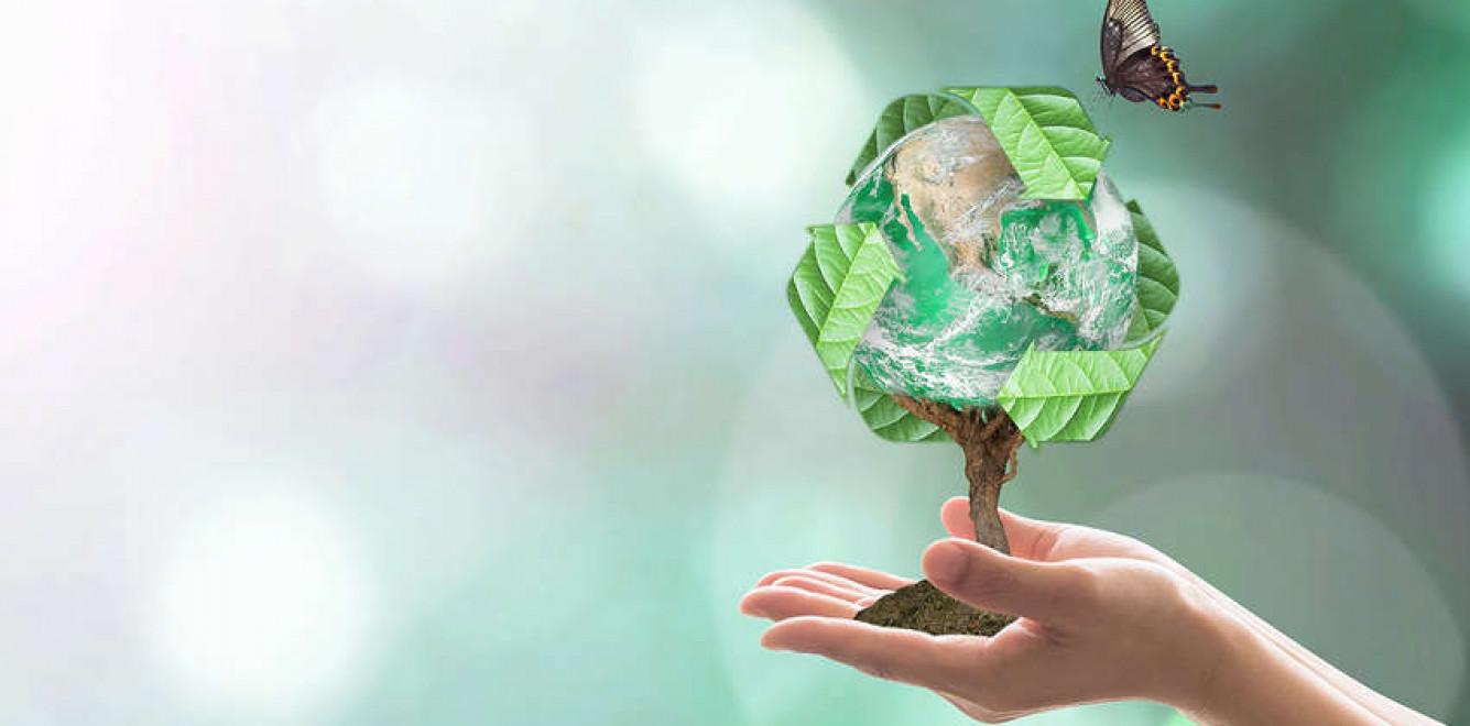 Опубликован рейтинг самых влиятельных женщин в экологической политике Украины