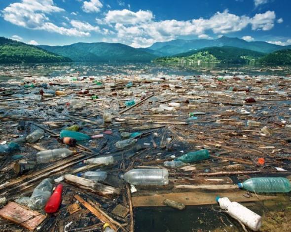 На Київщині звалища забруднили 900 гектарів земель