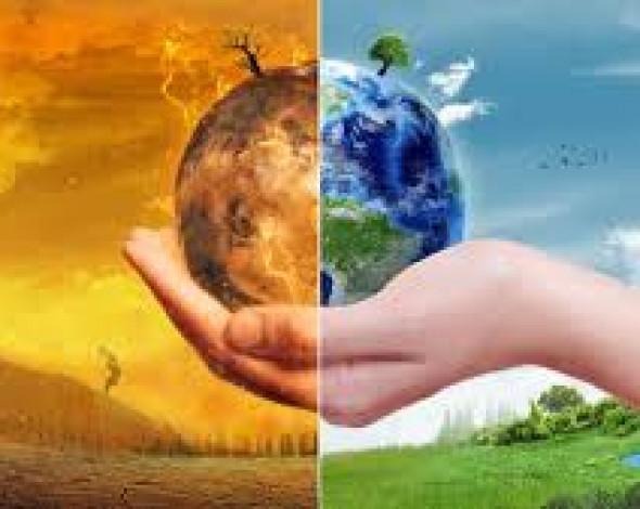 Екологічні тренди 2020 року. Які прогнози дають експерти на майбутне