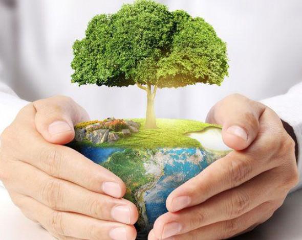 В законе об экологическом контроле нужно сбалансировать частные и публичные интересы, UBTA