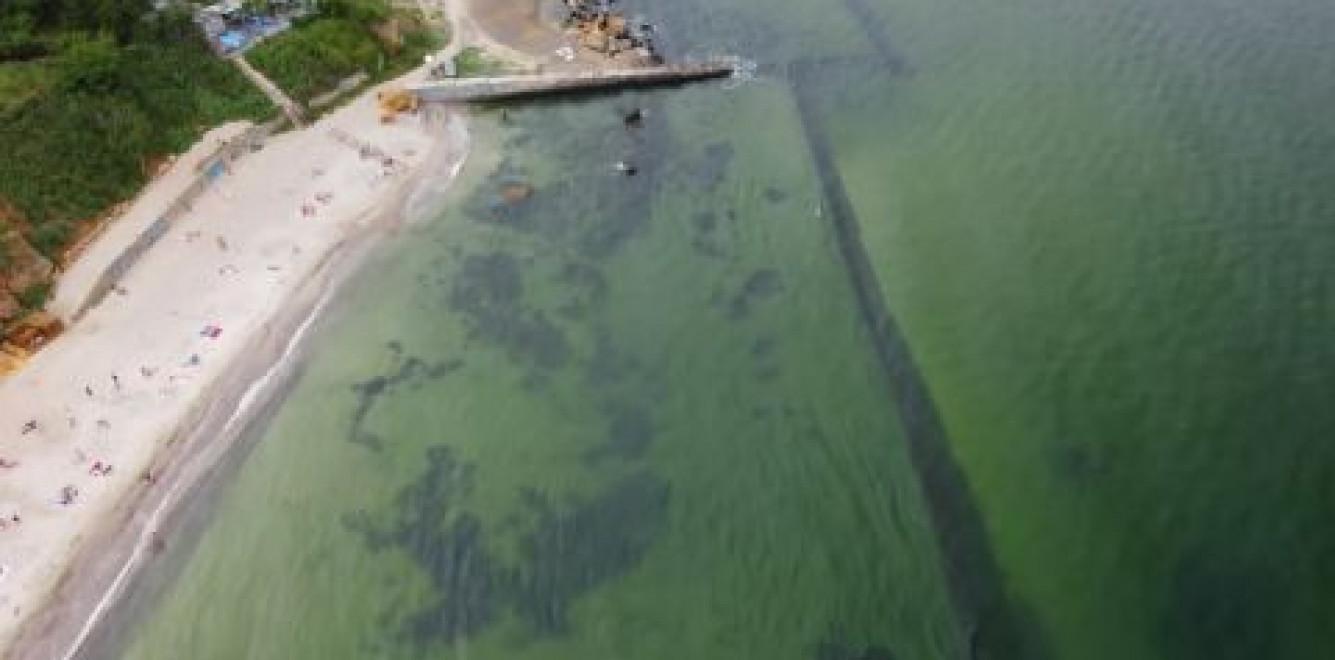 В Госэкоинспекции рассказали, как оперативно реагировать на загрязнение моря