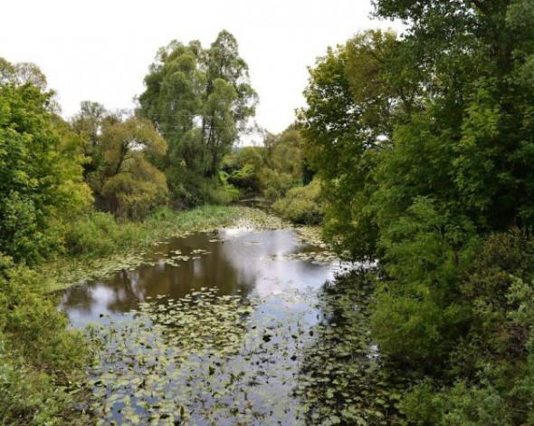 За последние 25 лет исчезло около сотни украинских рек