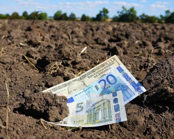 У Держекоінспекції попередили про ризики для екології з відкриттям ринку землі