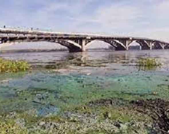 Стан басейну річки Дніпро критичний: результати моніторингу
