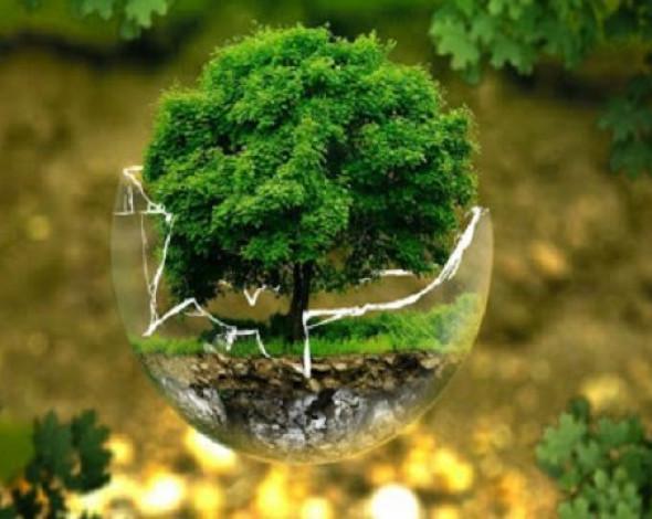 У минулому році екології України завдано збитків на понад 2 млрд гривень - Держекоінспекція