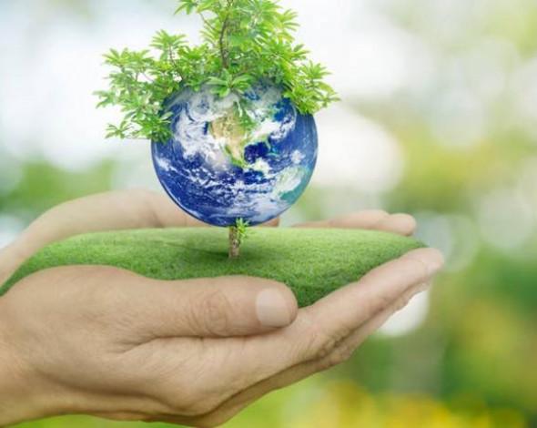 Уряд схвалив на своєму засіданні 21 нормативно-правовий акт у сфері охорони навколишнього природного середовища