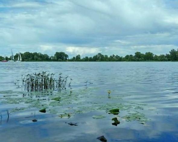 Экологи назвали катастрофическим состояние Днепра. В воде нашли 161 загрязнитель