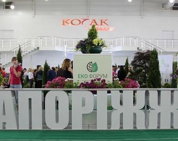 Запоріжжя: Від екологічного форуму чекають законотворчу ініціативу
