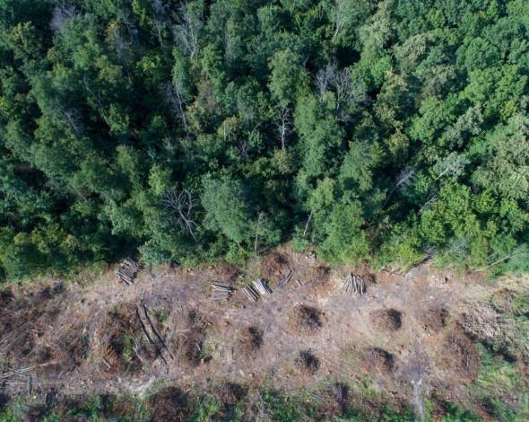 В Україні хочуть фіксувати екологічні порушення за допомогою аерокосмічної зйомки