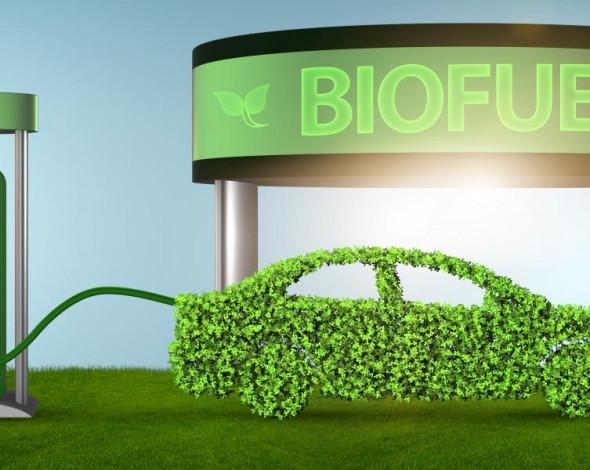 """Езда """"под градусом"""". Почему биотопливо, не лучшая идея для Украины"""