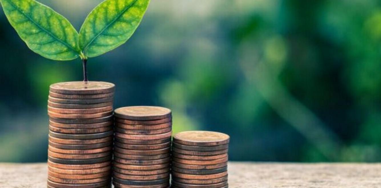 Для экомодернизации промышленности нужно возвращать бизнесу часть эконалога, - экологи