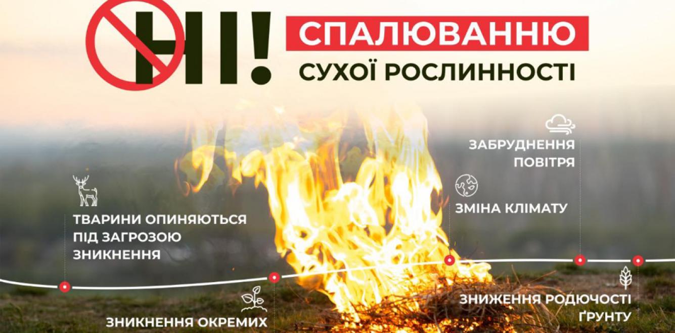НI! спалюванню сухої рослинності